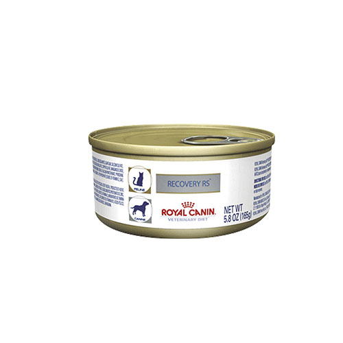 Royal Canin Recovery 165g